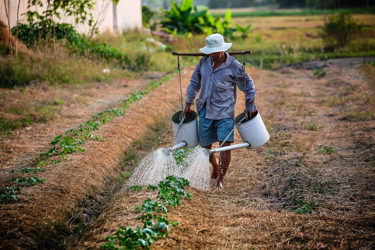 Pensione lavoratori agricoli: come funzionano